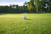 Close up of golf ball on green — Stock Photo