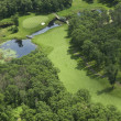 Aerial view of golf course — Stockfoto #21010313