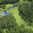 Aerial view of golf course — стоковое фото #21010313