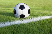 Soccer ball sits on grass field with white stripe — Stock Photo