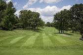 Golf fairway with trees on sunny day — Stock Photo