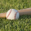 Baseball and bat on grass field in the morning sunlight — Stock Photo