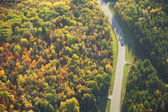 Aerial view of road curving through woods in fall color — Stock Photo