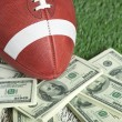 Stock Photo: College style football on field with pile of money
