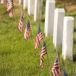 American flags near gravestones at Arlington National Cemetery i — Stock Photo #37947803