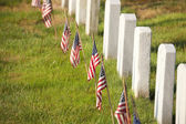 American flags near gravestones at Arlington National Cemetery i — Stock Photo