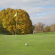 Golf green and ball with autumn trees — Foto de Stock