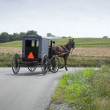 Stockfoto: Amish buggy turns a corner in Lancaster County Pennsylvania