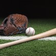 Baseball with mitt and bat on green grass at night — Stock Photo #41279197
