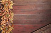Fall border with sunflowers on grunge red wood background — Stock Photo