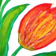 Stock Photo: Flowers drawn by water color paints