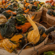 Gourds — Stock Photo #13715730