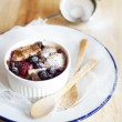Mixed Berries and Chocolate Chip Bread Pudding — Stock Photo #25401429
