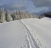 Paisagem de inverno nas montanhas dos cárpatos — Foto Stock