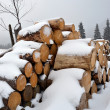 Firewood under the snow in winter — Stock Photo #19144795