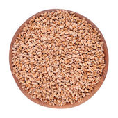 Wheat grains in a wooden bowl on a white background — Stock Photo