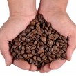 Coffee beans in the hands — Stock Photo