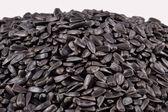 Heap of  black sunflower seeds — Stock Photo