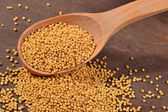 White mustard seeds in a spoon — Stock Photo