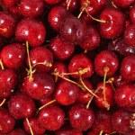 Red cherries background — Stock Photo #48605743