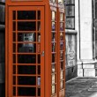 Stock Photo: Red British telephone booth