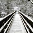 Snowcovered walkway Nidd Gorge — Stock Photo #13558795
