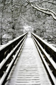 Snowcovered walkway Nidd Gorge — Stock Photo