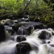 Aira Beck, Lake District, England — Stock Photo