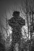 Ivy covered cross Bradford cemetery — Stock Photo