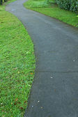 Walk path with green grass — Foto Stock