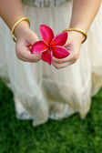 Little girl holds a beautiful pink flowers — Stock Photo