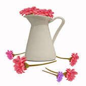 Pink flowers bouquet in white jug (isolated) — Photo
