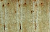 Dřevěné prkenné textury — Stock fotografie