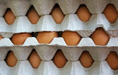 Sort eggs — Stockfoto