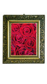 Magic mirror with red roses — Stock Photo