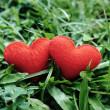 Two small red hearts in a grass meadow — Stock Photo #49408349