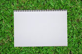 Blank notebook recycle paper open two page with copy space area for multipurpose use open on green grass field — Stock Photo