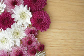 Flowers on wooden background. Frame design. — Stock Photo