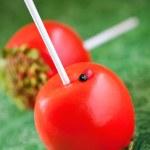 Chocolate apples — Stock Photo