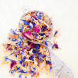 Dried flower petals  — Stock Photo