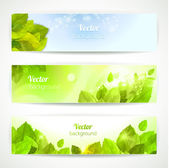 Set of vector banners with beautiful leaves. — Stock Vector