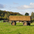 Trailer with straw in a field — Stock Photo