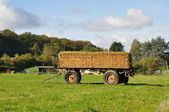 拖车用稻草在一个字段中 — 图库照片
