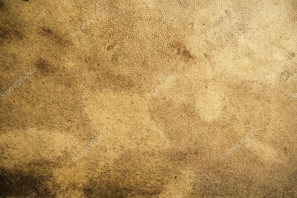 Abstract background of the grainy texture of old leather with a mottled stained appearance and rough texturing Abstract background of the grainy texture of old leath  Foto Stock #13248276