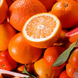 Assortment of fresh citrus — Stock Photo