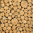 Texture of cut timber logs - Stock Photo