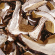 Stock Photo: Dried sliced mushrooms
