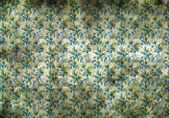 Vintage wallpaper with little blue flowers — Stock Photo