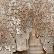 Background of old peeling wood — Stock Photo #24763903