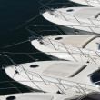 Bows of row of luxury motorboats — Stock Photo #40551117